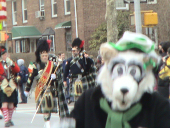 St Pat's Day Parade Sunnyside Woodside Queens