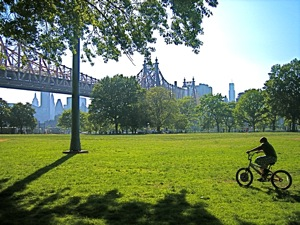 Queensbridge park long island city queens ny