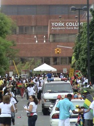 York College Jamaica Queens