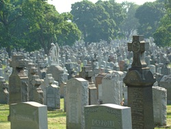 calvary cemetary in queens