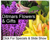 flower shops in astoria