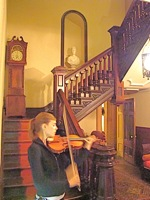 violinist at steinway mansion