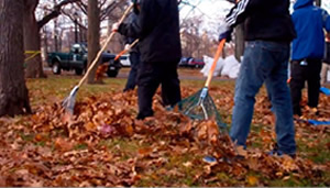 leaf fest collection in astoria queens