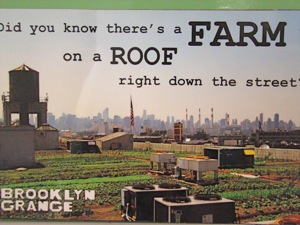 brooklyn grange urban farm