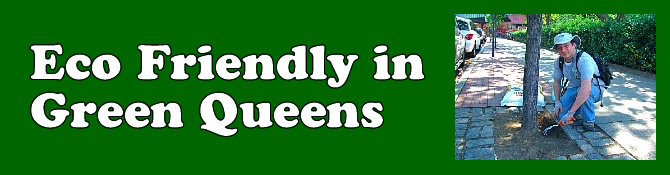 green queens eco friendly queens ny