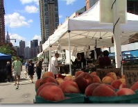 lic farmers market long island city queens lic