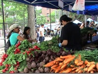 jamaica farmers markets jamaica green markets queens nyc