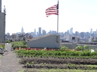 brooklyn grange farmers market hours