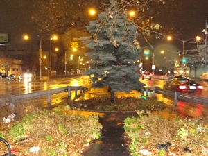 holiday tree lighting in sunnyside woodside