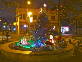 tree lightings astoria queens